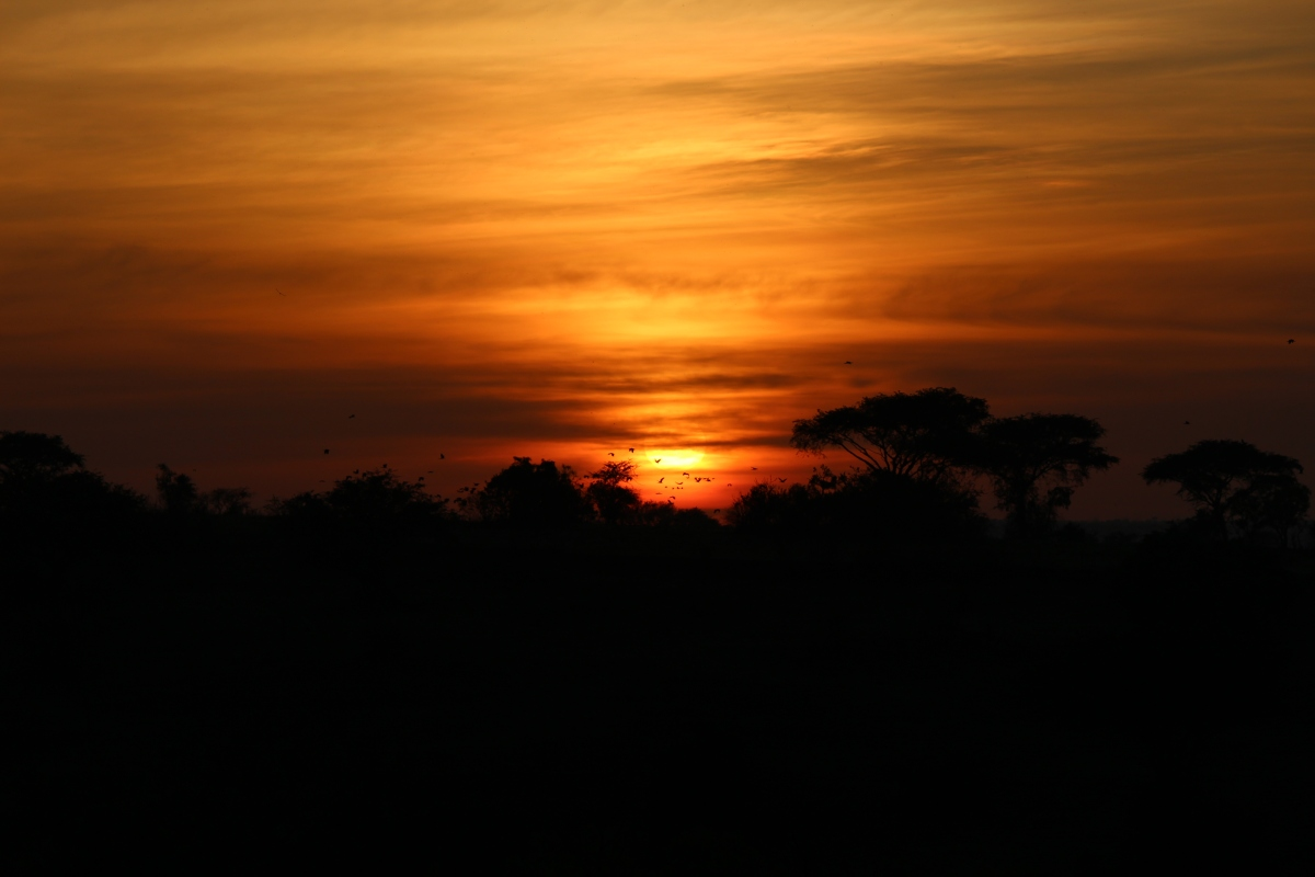 Sunrise at Murchison Falls National Park