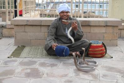 Kom Ombo, snake charmer