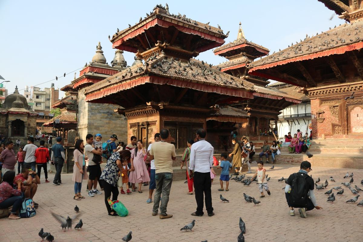 Pigeons in Kathmandu Durbar Square