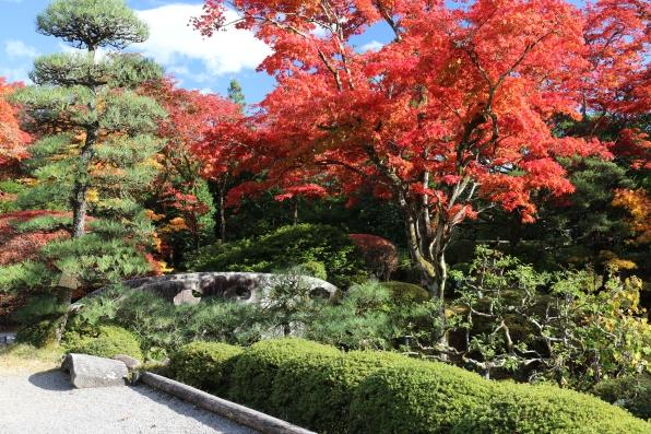 garden, Nikko
