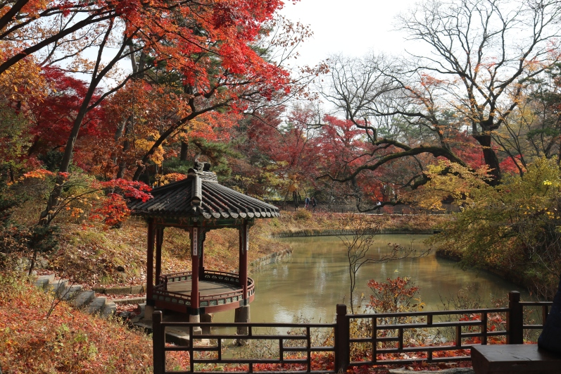 Huwon Secret Garden, Changdeokgung (6)